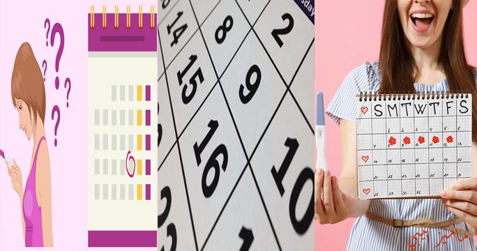 كيفية حساب الدورة الشهرية