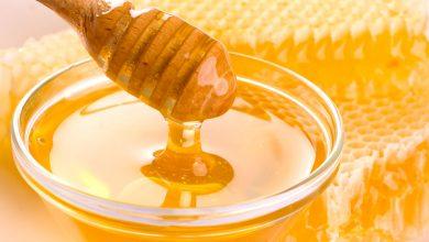 صورة فوائد العسل أثناء الحمل – فوائد تتعدى مجرد متعة الذوق