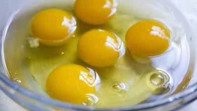 صورة تعرفي على فوائد صفار البيض للشعر